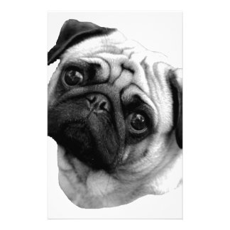 Pug Dog Stationery