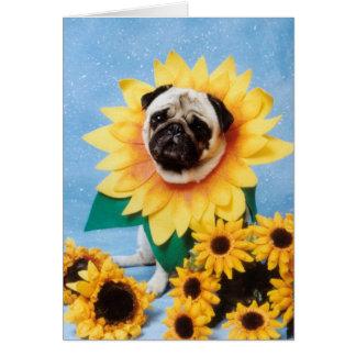 Pug Dog Sunflower Greeting Card