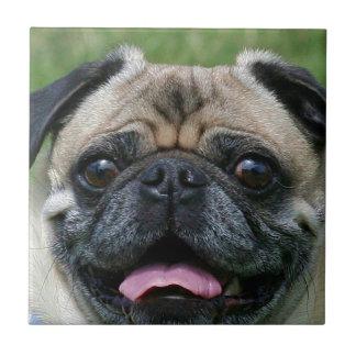 Pug Dog Tile