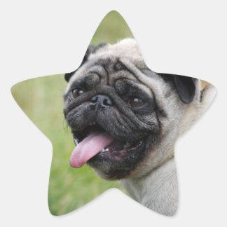 Pug dog tongue cute photo sticker, stickers