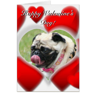 Pug dog Valentines Day Card