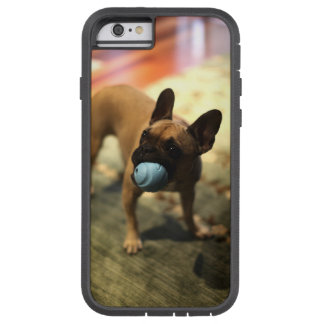 Pug Dog With Ball Iphone 6/ 6s Case