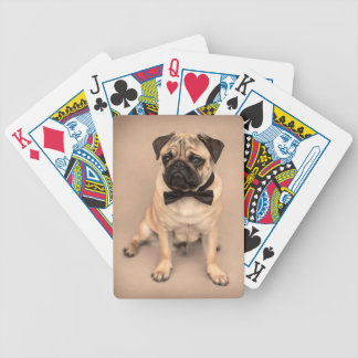 Pug Dog with Bow Tie Bicycle Playing Cards