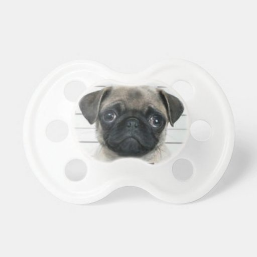 Pug Baby Pacifiers