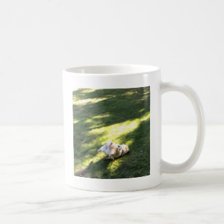 Pug Faceplant Coffee Mug