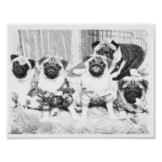 Pug Family Poster