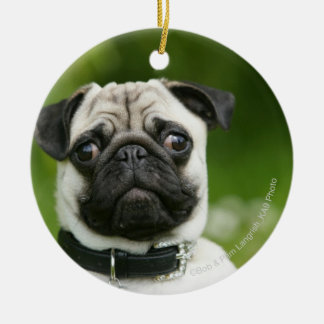 Pug headshot christmas ornament