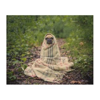 Pug in a Blanket Wood Print
