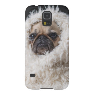 Pug In A Rug Phone Case