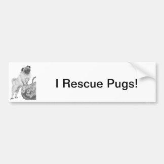 Pug in Black White Bumper Stickers