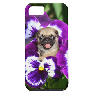 Pug in Pansies iPhone 5 Covers