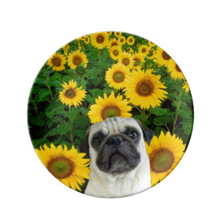 Pug in sunflowers plate