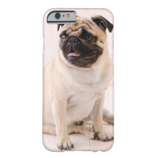 Pug iPhone 6 Barely There Case  / Cover / Protect