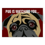 Pug Is Watching Greeting Cards