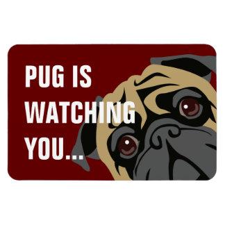 Pug Is Watching Rectangular Photo Magnet