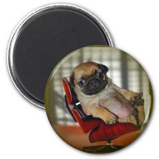 Pug it! 6 cm round magnet