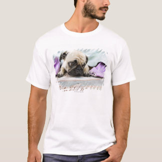 Pug looking innocent after chewing the toe off T-Shirt