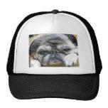 pug mesh hats