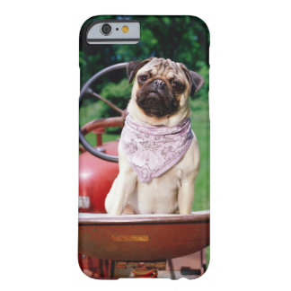 Pug on lawnmower wearing bandana barely there iPhone 6 case