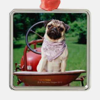 Pug on lawnmower wearing bandana christmas ornament