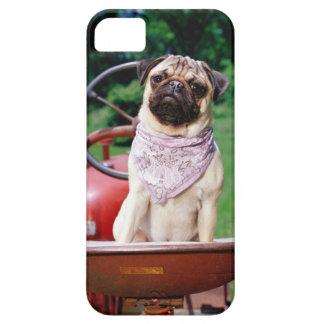 Pug on lawnmower wearing bandana iPhone 5 cases