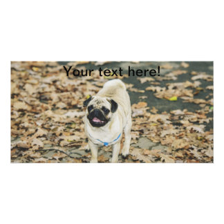 Pug Personalized Photo Card