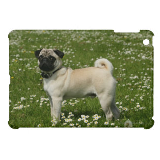 Pug Playing in Flowers Cover For The iPad Mini