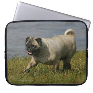 Pug Playing Near Water Laptop Sleeve