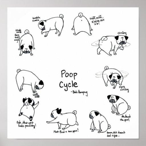 Pug Poop Cycle Print