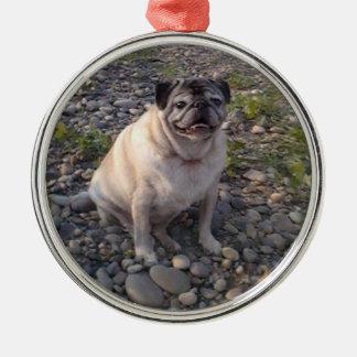 Pug-Premium Round Ornament