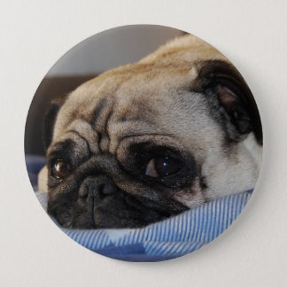 Pug Pug 10 Cm Round Badge