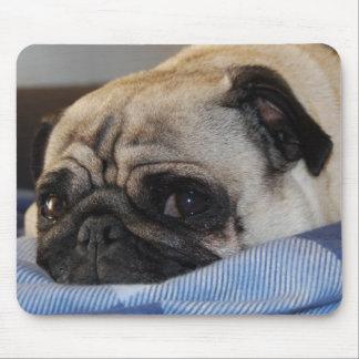 Pug Pug Mouse Pad