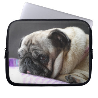 Pug pug ~ photo Jean Louis Glineur Laptop Sleeve