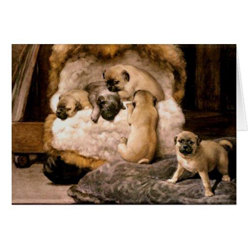 Pug Puppies Card