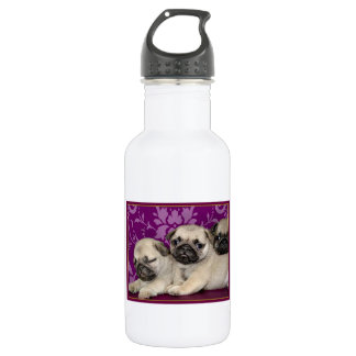 Pug puppies dog 532 ml water bottle