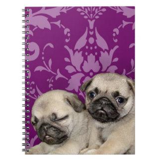 Pug puppies dog spiral notebook