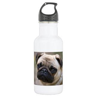 Pug Puppy 532 Ml Water Bottle