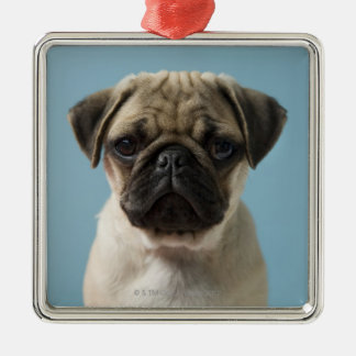 Pug Puppy Against Blue Background Christmas Ornament