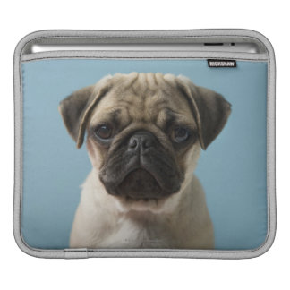 Pug Puppy Against Blue Background iPad Sleeves