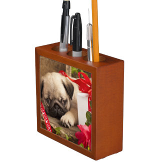 Pug Puppy and Gift  Box Desk Organiser