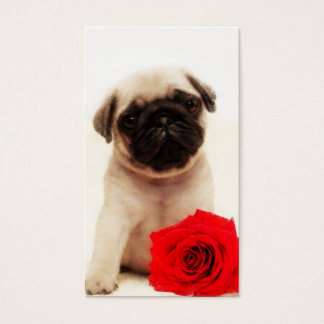 Pug puppy and red rose business card