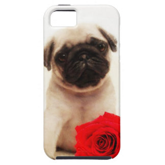 Pug puppy and rose tough iPhone 5 case