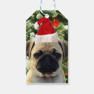 Pug Puppy Dog Christmas Tree Ornaments Snowman Gift Tags