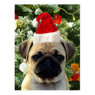 Pug Puppy Dog Christmas Tree Ornaments Snowman Postcard