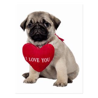 Pug Puppy Dog Greeting Postcard
