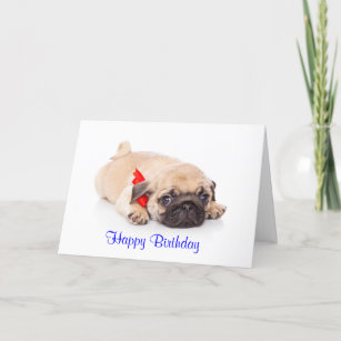 Pug Puppy Dog Happy Birthday Card
