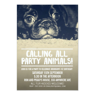 Pug Puppy Dog Party Invite [Full Bleed Photo]
