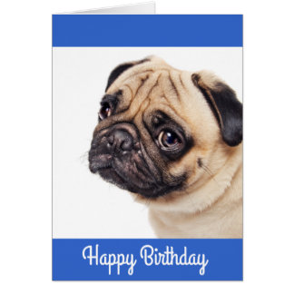 Pug Puppy Happy Birthday Card - Verse inside