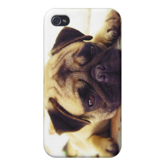 Pug Puppy Laying on the Ground looking Sad iPhone 4 Case