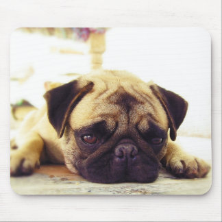 Pug Puppy Laying on the Ground looking Sad Mouse Pad
